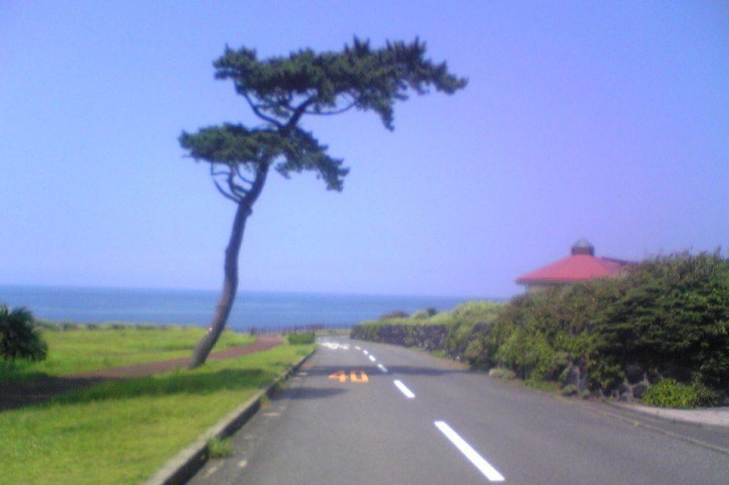 伊豆大島 海岸線